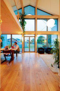 house-1729-ein-grosser-luftraum-ueber-dem-wohn-und-essbereich-bringt-im-erdgeschoss-die-dritte-dimension-ins-2