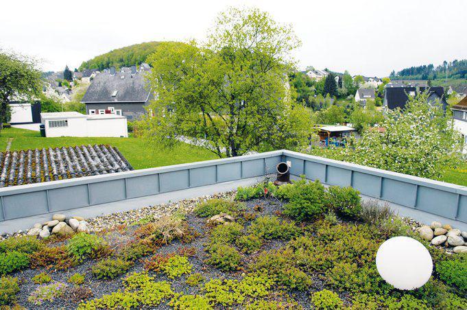 house-562-der-ausblick-ueber-die-dachter-rasse-geht-direkt-ins-satte-gruen-des-siegerlandes-hinueber-zum-el-2