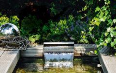 Wasser im Garten_Gaertner von Eden_Borgmann