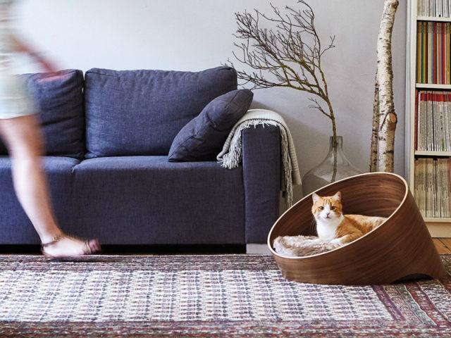 Katzenkorb mit Katze