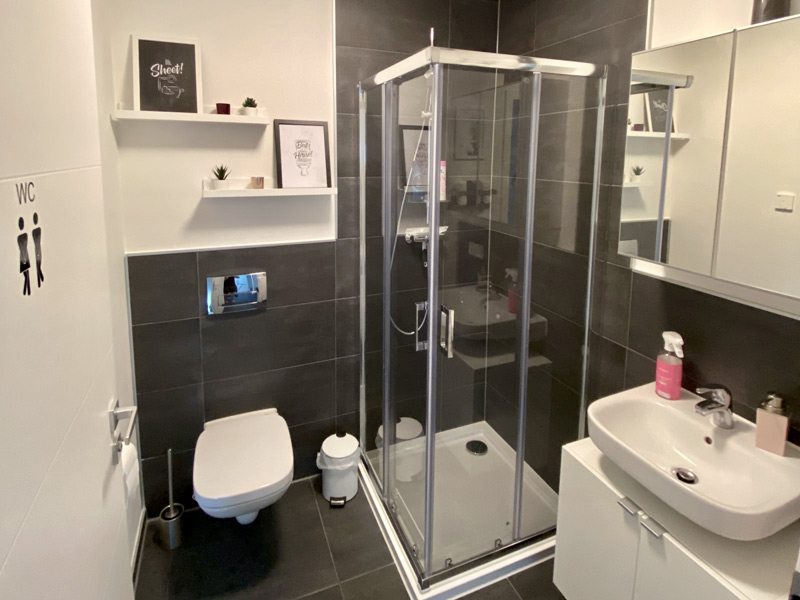 Badezimmer im mit dem Hauskonfigurator geplanten DAN-WOOD Family 129