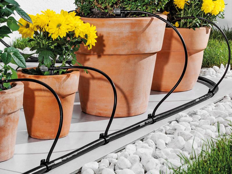Balkonpflanzen Bewässerung Kärcher