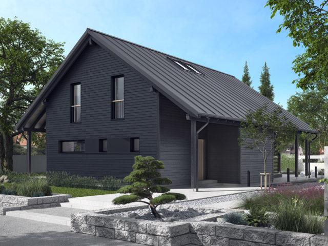 Architekturentwurf Ausblick von Baufritz, Einfahrt, Fassade