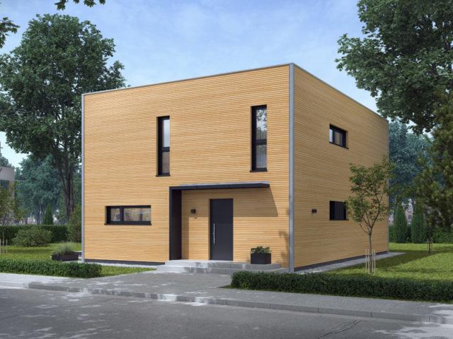 Architekturentwurf Kubus von Baufritz Eingang Holzfassade