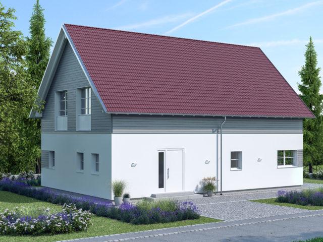 Architekturentwurf Klassik von Baufritz Eingang
